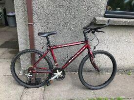 Townsend Phobus Mountain Bike