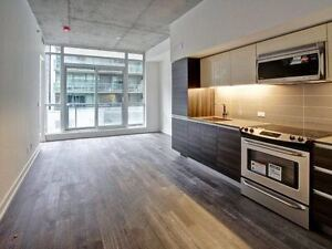 Gorgeous 2 Bedroom 2 washroom Condo for rent