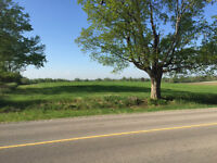 1 Acre country property for sale