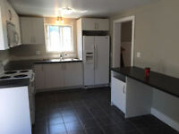 Newly Renovated 3 Bedroom Home Close to DT & UWO