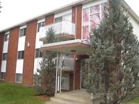 South Side 1 Bdrm Apartment in Allendale - Close U of A & Whyte