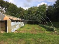 Polytunnel frame x3 no plastic cover! discount!