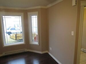 HIGH QUALITY PAINTING .. FAIR PRICES .. HOMES, APTS, NEW BUILDS St. John's Newfoundland image 4