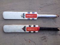 Two Gray-Nicolls Junior Cricket Bats