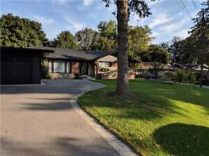 Stunning Detached Bungalow In Burlington! Backing Onto Valley!