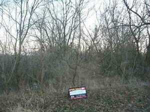Beautiful Lot Available in Greensville!