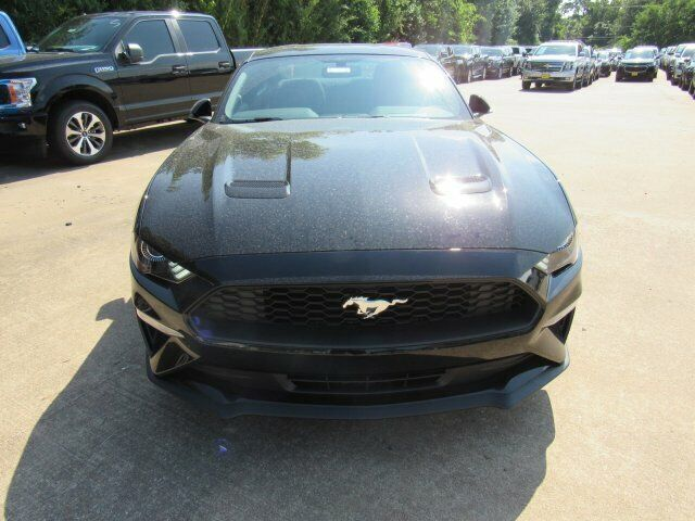 Owner 2019 Ford Mustang EcoBoost 2800 Miles Shadow Black 2dr Car Intercooled Turbo Pre