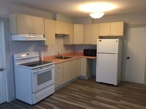 Completely Renovated Above Ground Basement Apartment for Rent