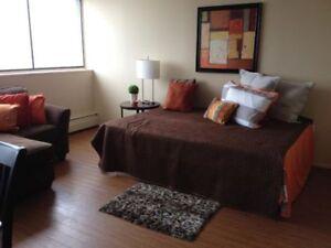 Spacious Studio Apartment - Only $850