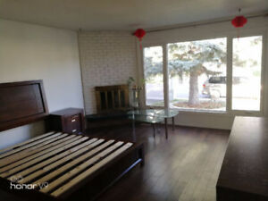 Spacious Furnished Room with Fireplace for Rent at South