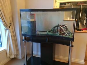 80 gallon tank with filter