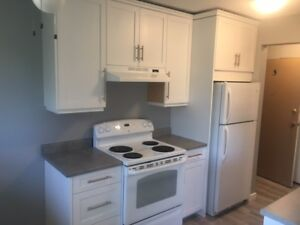 Updated Modern 2 Bdrm on Upper Red River Rd!