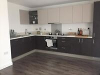 Spacious Modern 1 bed Apartment West Ealing 3 months Short/ Mid Term Let