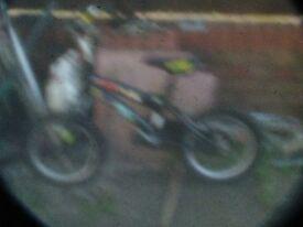 childs bike ben 10