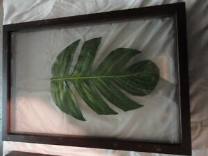 set of 2 -  framed tropical leaf art pieces London Ontario image 3