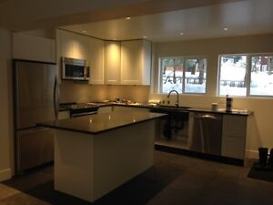 Looking for a single housemate in beautiful brand new whistler a