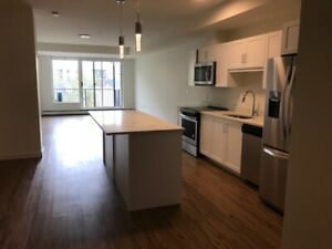 SOHO 2 bed 2 bath Downtown Harbour view apartment