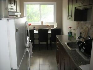 GRANITE!!! Large 1 bdrm apt near Beechwood Zehrs - No Lease