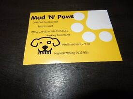Qualified Professional Groomer in Woking Working From Home