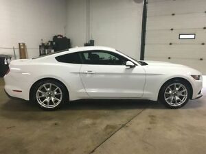 2015 Ford Mustang EcoBoost Leather, Navigation, Backup Camera