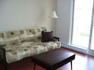 Fully furnished apartment - Available December 5th