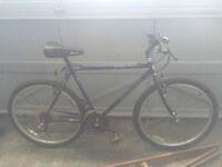 Black Tusk Bike