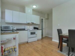 bright basement for rent $1200 oct 1
