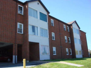 Non smoking one bedroom apartment - Fairview