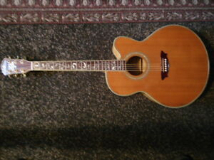 "Washburn Cumberland  ""Tree of Life""  acoustic/electric guitar"
