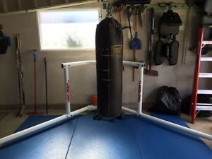 Heavy Bag and Century Stand