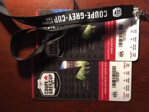 2 GREAT GREY CUP SEATS MAKE ME A PRICE OFFER