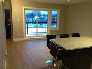 Gorgeous New Unit in Sandy Hill, Bedrooms available! All-In!!
