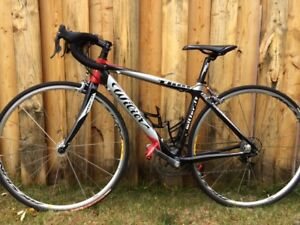 Wilier full carbon frame bike 50 cm