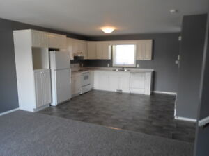 Spacious 2 Bedroom House in Steinbach Available July 1st!