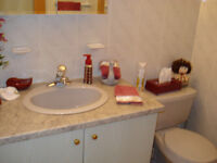 GREY SINK/FAUCET, CABINET/COUNTERTOP AND TOILET FOR POWDER ROOM