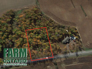 Rare Chance to Buy a Building Treed Lot Near Aylmer/Belmont!