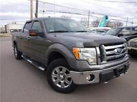 2009 Ford F-150 XLT 4X4, CHROME PACKAGE, LOADED! 416-742-5464