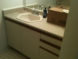 "cabinet 49"" as shown in photo with sink hexagon almond"