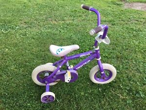 small bicycle with Training Wheels