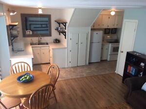 Fully Furnished 1 Bedroom in Brighton available April 1st