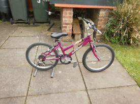 Raliegh Krush Girls Bike