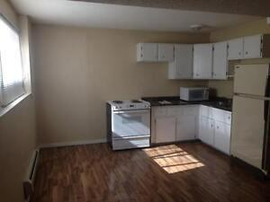 1 Bedroom Basement Suite