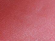 Lederreste Rot