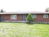 Detached Home Bungalow With Finished Basement Of Brampton