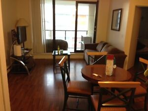 2 BEDROOM,2 BATHROOM CONDO,FURNISHED,DOWNTOWN, DRAKE & HOWE,OCT1