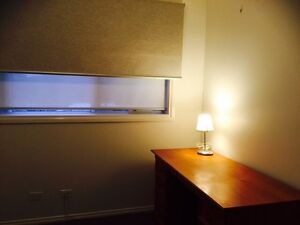One bed room for lease in Croydon $150pw shared bills Croydon Maroondah Area Preview