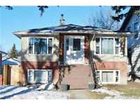 Very nice basement room in 3 bdrm basement near Whyte and U of A