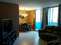 Beautiful apt. for rent across from white oaks mall