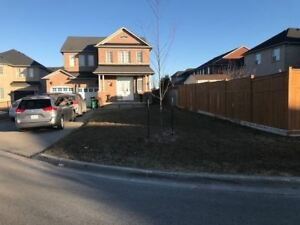 ID#18005 Detached 4bed/3bath Brampton Home W/ Ravine In Front