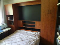 Unit Wall wit Murphy Bed